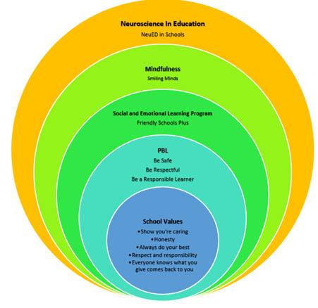 NPS Wellbeing Framework